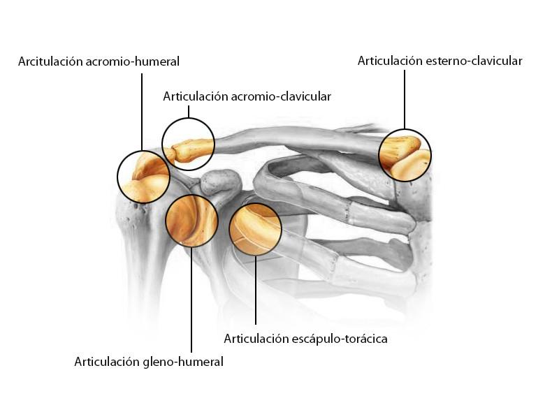 lesiones en el hombro